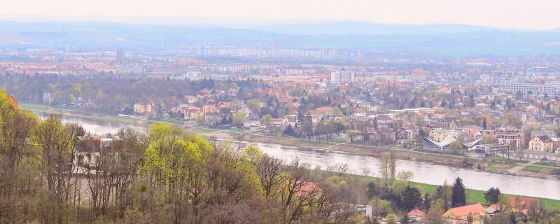 Der Waldpark in Loschwitz eignet sich super für Spaziergänge und ein Picknick mit den Liebsten.