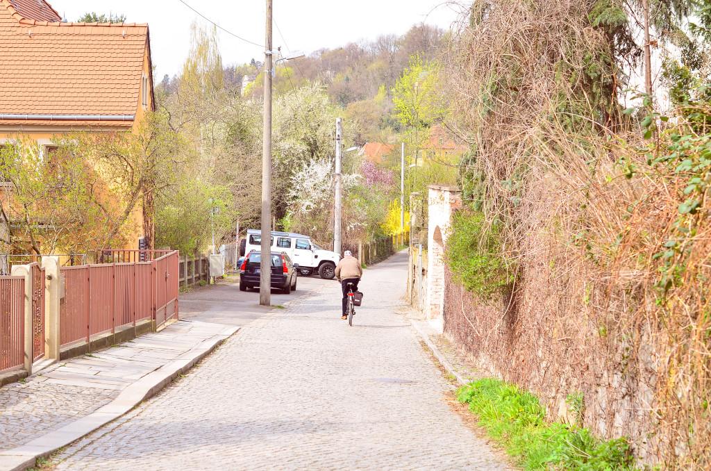 Eine typische Wohnsiedlung am Loschwitzer-Hafen
