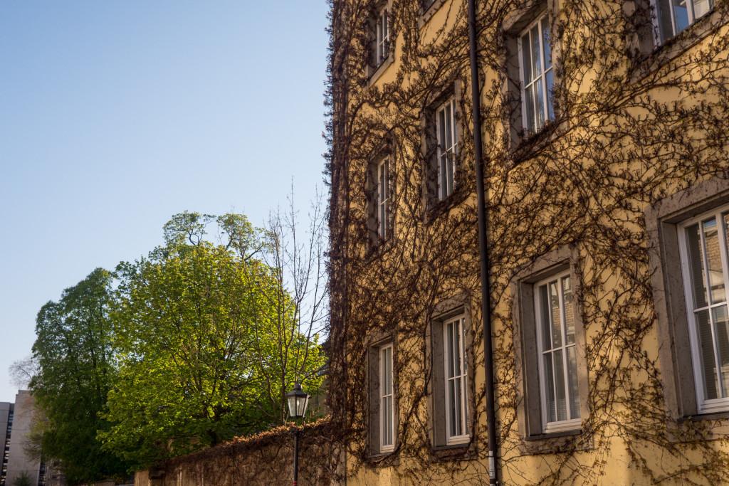 Stadtteil Dresden Friedrichstadt