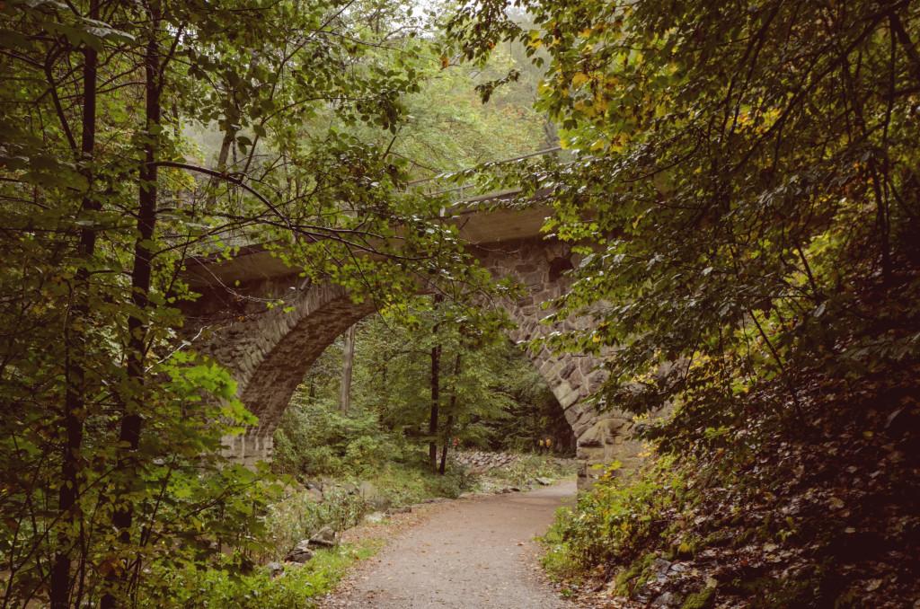 Wer das Wandern liebt, sollte sich die Route durch den Rabenauer Grund nicht entgehen lassen