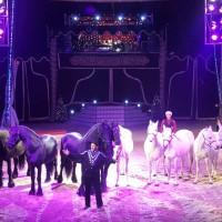 Header Circus Voyage