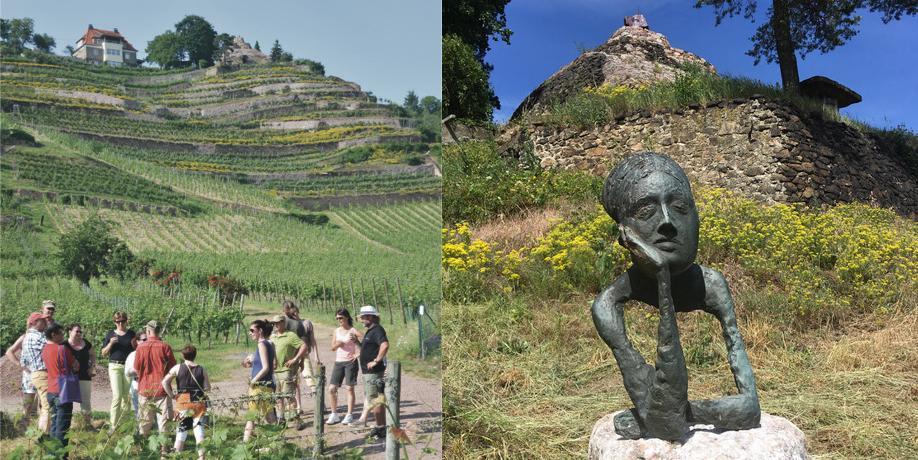 Die Führungen über das Weingut sind sehr interessant und bieten von der steinernen Schnecke aus, einen herrlichen Blick!