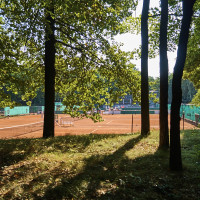 Im Waldpark können Kinder den Spielplatz nutzen, man kann spazieren, die schöne Ruhe genießen oder sportlich aktiv sein!