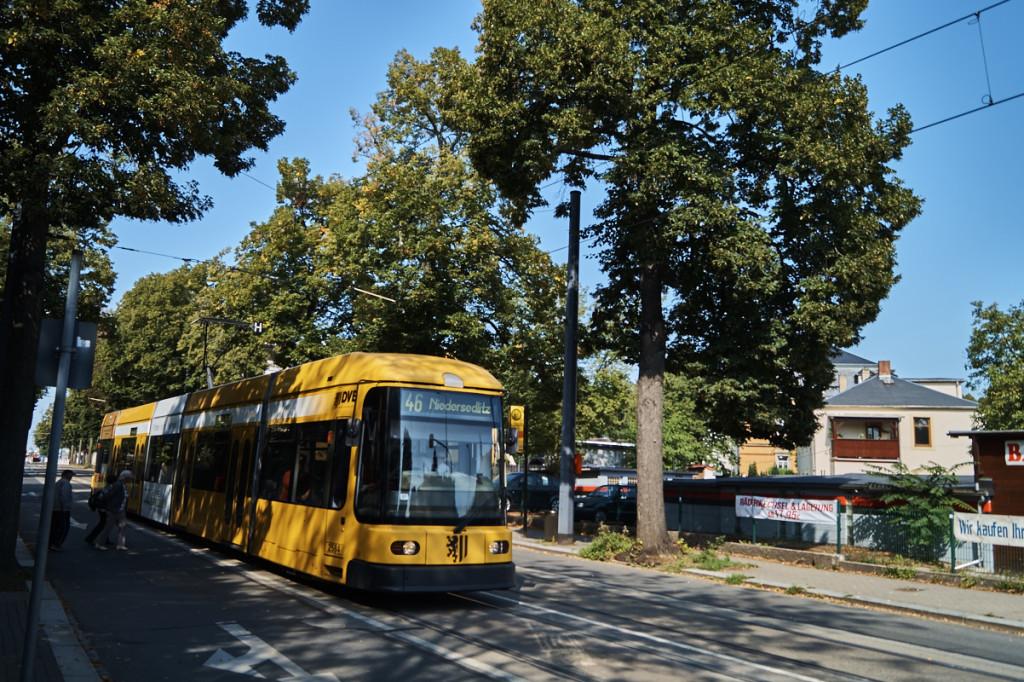 In Tolkewitz kann man direkt an einer Allee wohnen und ist durch die Straßenbahn angebunden