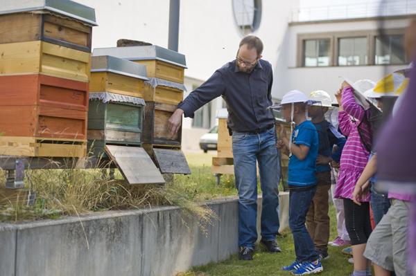Die Bienenführungen sind für Grundschulkinder immer sehr spannend!