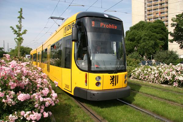©DVB - Achte die nächste Zeit auf die Schienen in Dresden. Du wirst oft den grünen Rasen bemerken!