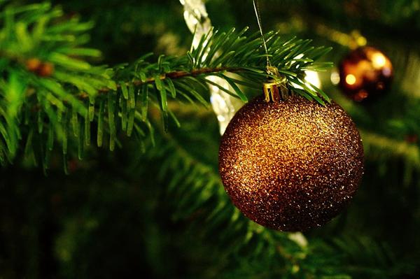 Was wäre Weihnachten ohne einen Tannenbaum?