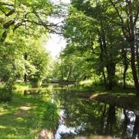 dresden_grün_großergarten