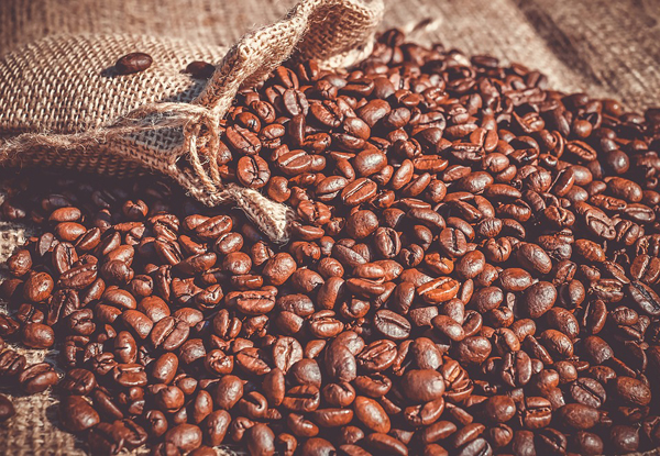 Hier wird der Kaffee schonend zubereitet!