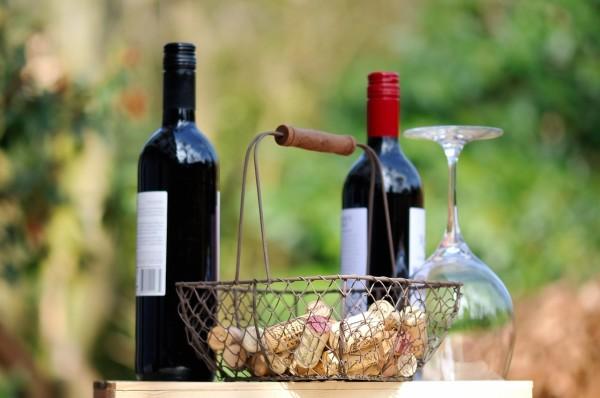 Weinhandlungen und Weinverkostungen.Weinflaschen