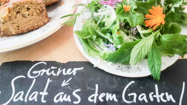 Salat aus dem Innenhof, Foto ©Wilde Flora